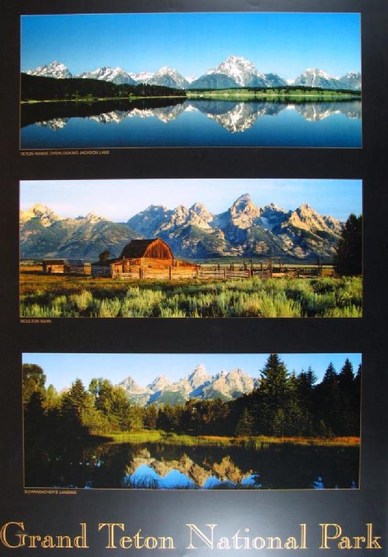 Grand Teton 3 Images Art Print