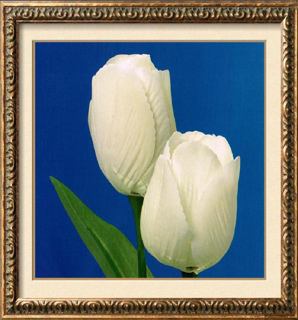 White Tulips On Blue Canvas Giclee Great Sale