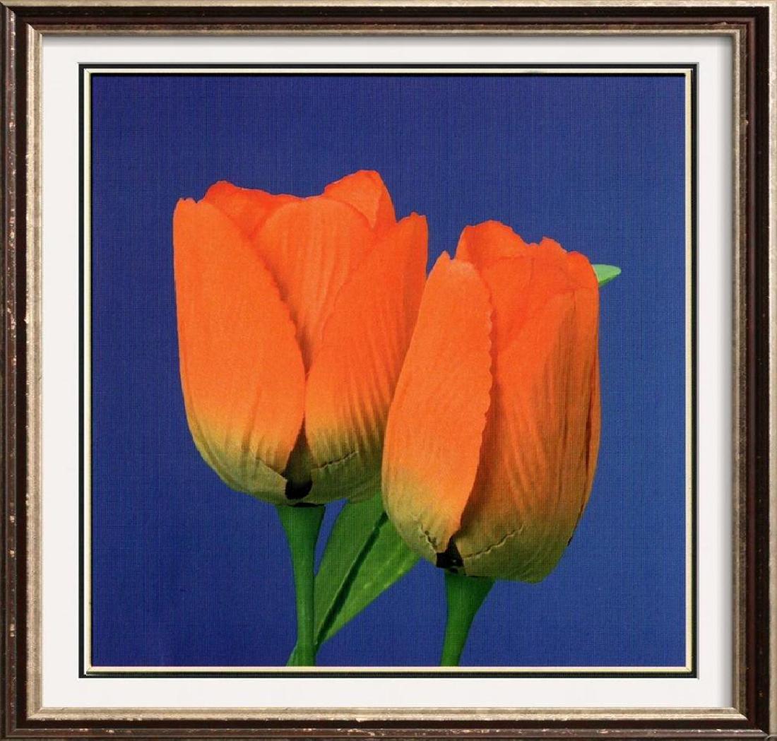 Modern Art Purple Orange Tulip Canvas Floral Sale