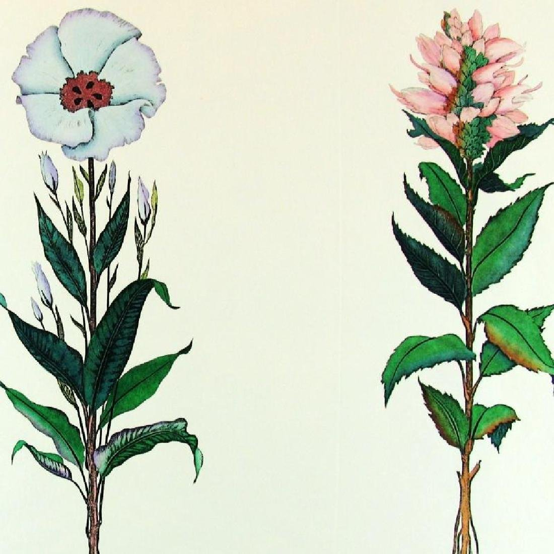 Colorful Etching Floral Hand Colored Ltd Ed - 4