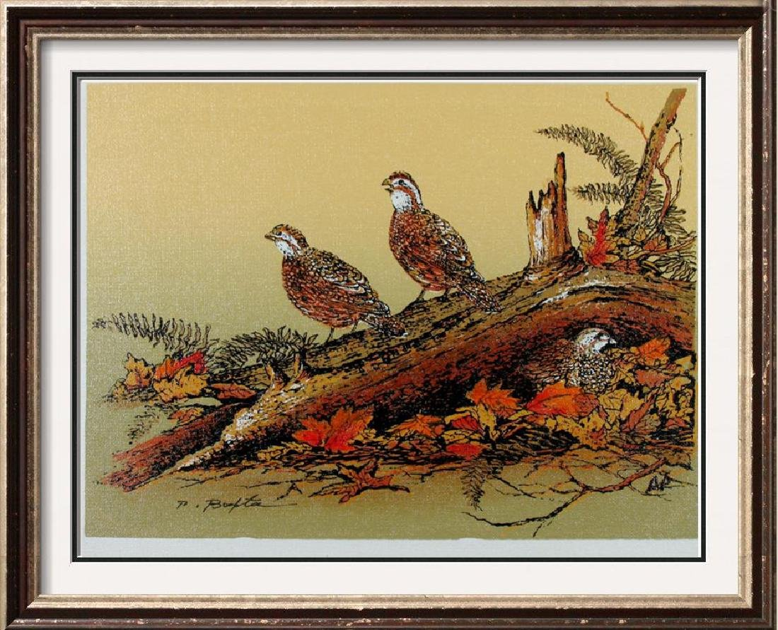Birds Perched  A/P Ltd Ed Canvas Only $20 Dealer Sale