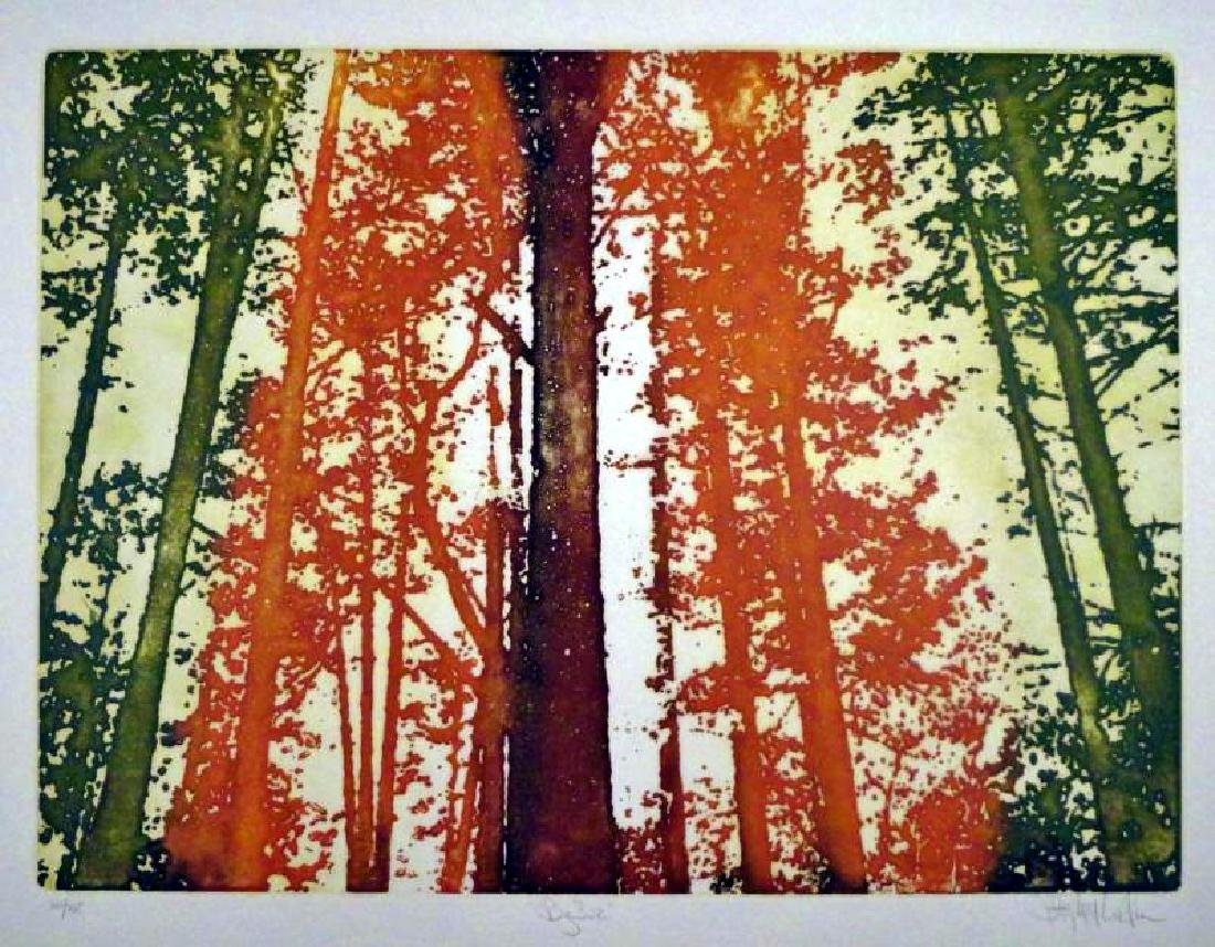 Etching Big Sur Colored Signed Ltd Ed Value=Great - 2