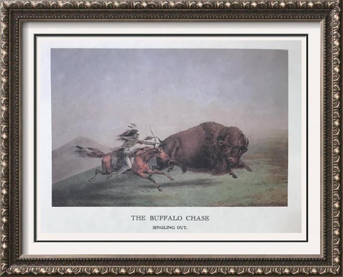 The North American Indian: The Buffalo Chase & Buffalo
