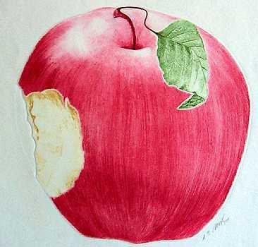 1122B: Apple Kravjansky Original Colored Etching HUGE S