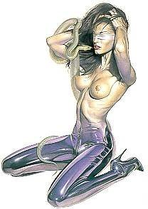 503239: EROTIC SIGNED SORAYAMA LTD EDITION RARE SALE