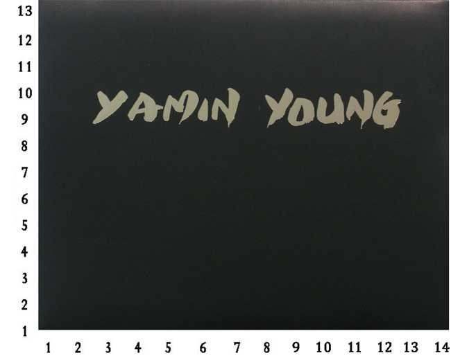 Yamin Young 1989 Collectors Edition Leather With Hard