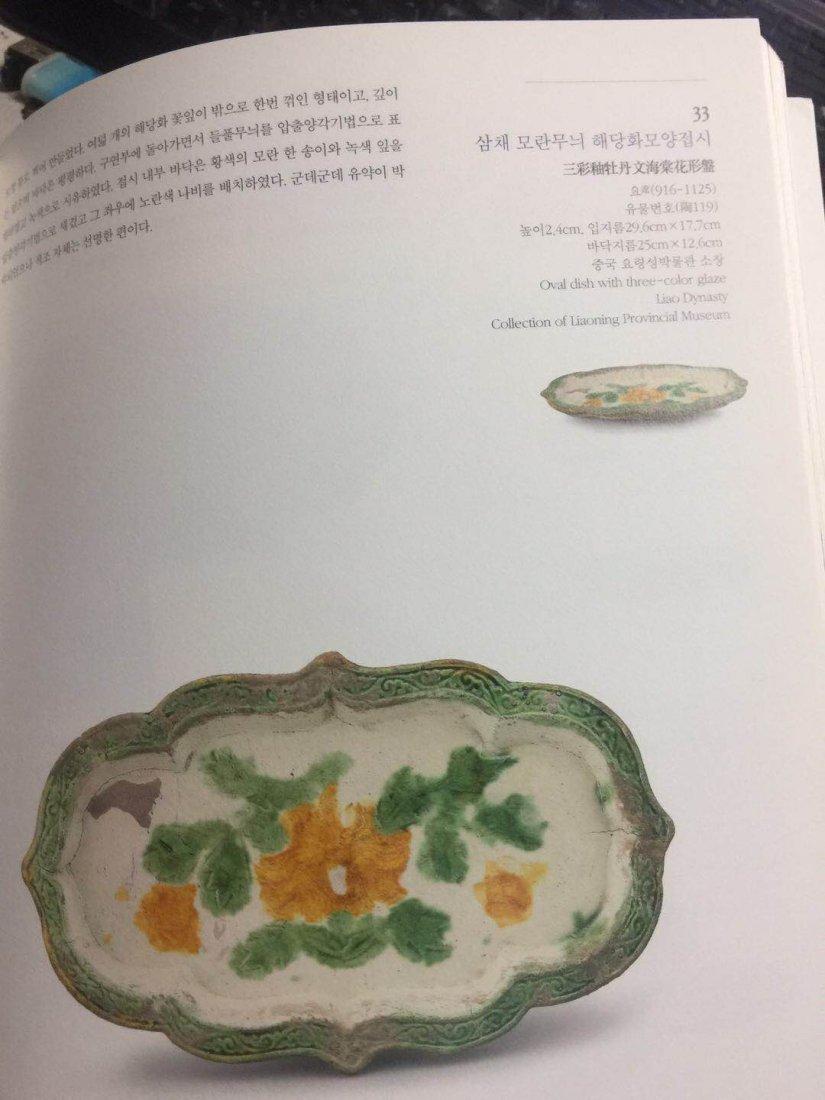 Chinese Sancai ( 三彩 ) plate Liao dynasty - 7