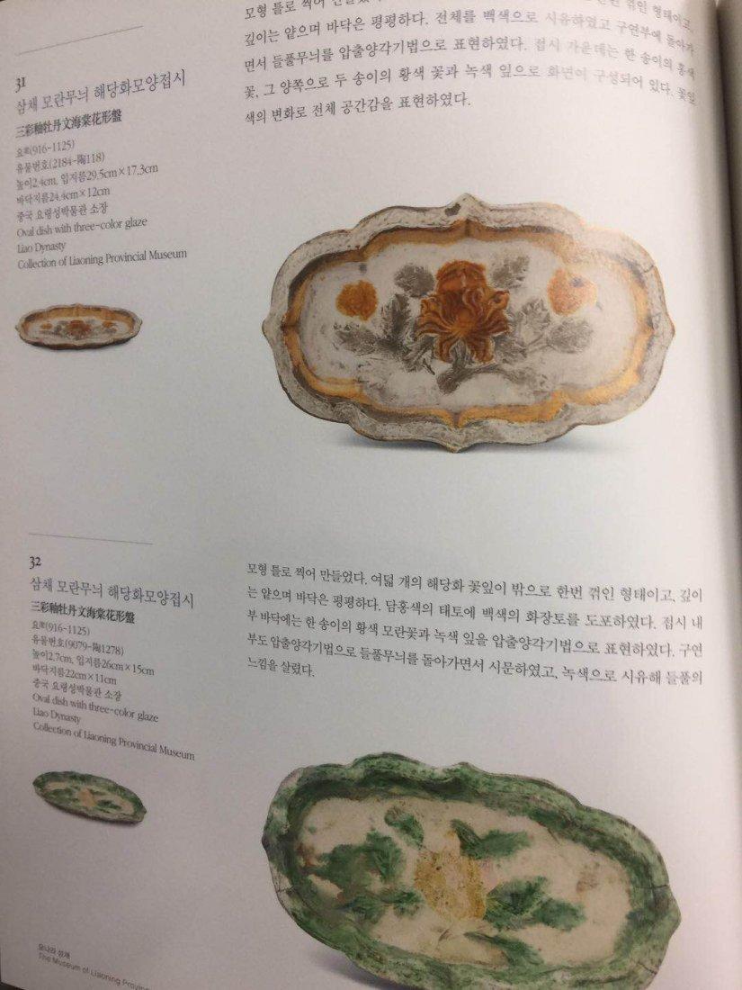 Chinese Sancai ( 三彩 ) plate Liao dynasty - 8