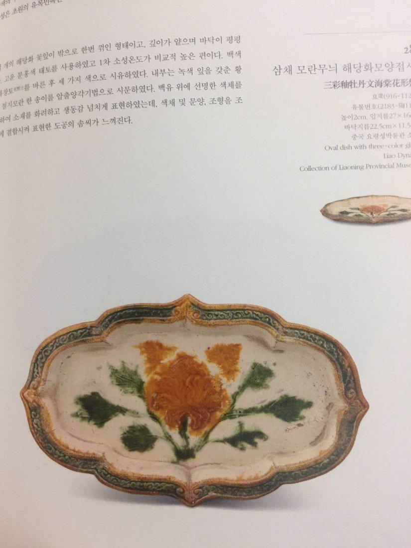 Chinese Sancai ( 三彩 ) plate Liao dynasty - 9