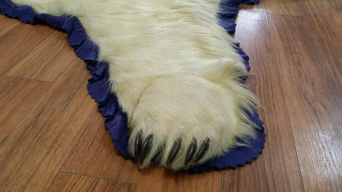 Real Polar Bear Skin Carpet  8' - 3