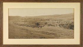 13: Two LA Huffman Original Photographs