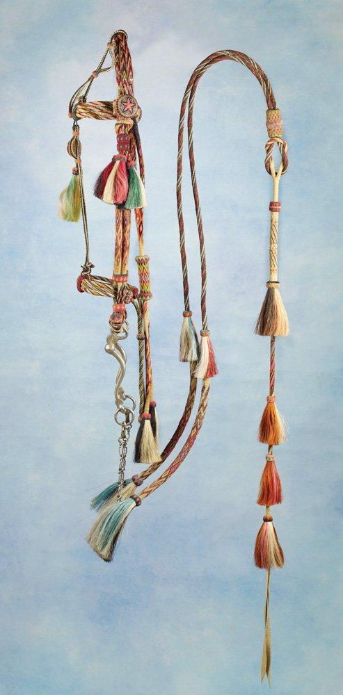 23: 12-Color Yuma Horsehair Bridle