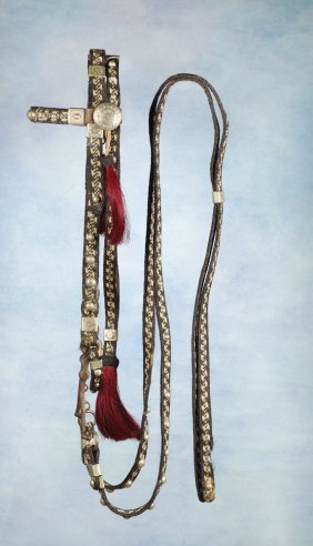 24: Canyon City Horsehair Bridle