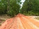 155: GENEVA _COUNTY_AL_50' x 100'_Bid and Assume