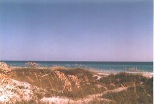 160E: WALTON COUNTY, FLORIDA - (25' x 105')
