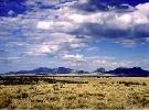 163E: NAVAJO COUNTY, AZ - 40 Acres