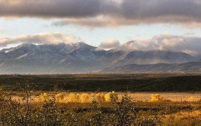 COCHISE COUNTY, AZ - 3 Acres - Bid and Assume Loan
