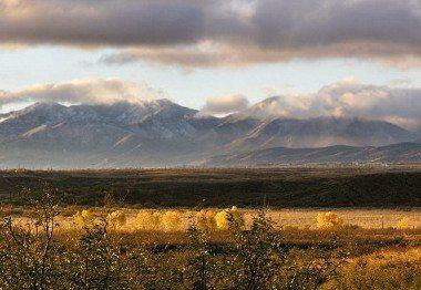 GILA COUNTY, AZ - 0.1 Acres - High Bid Wins!!