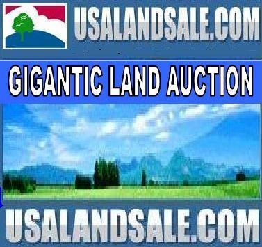 27A: APACHE COUNTY, AZ - 40 Acres - Bid and Assume Loan