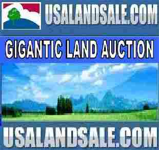 PRESIDIO COUNTY, TX - 10 AC - Bid and Assume Loan