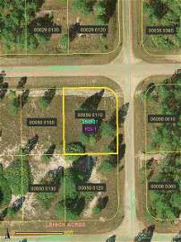 8C: Lee County, Fl - 1/4 Ac - Bidders Choice!!