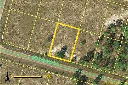 17C: LEE COUNTY, FL  - 1/4 AC - BIDDER'S CHOICE!