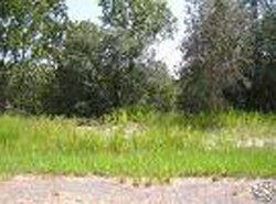 7: Hamilton County, Florida Residential Lot