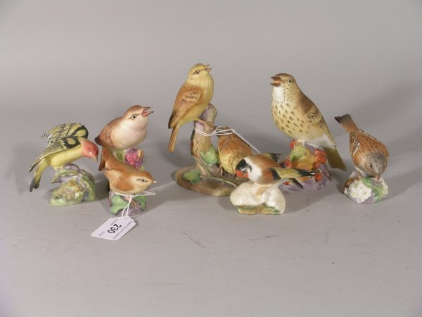 230B: A collection of seven Royal Worcester birds, each