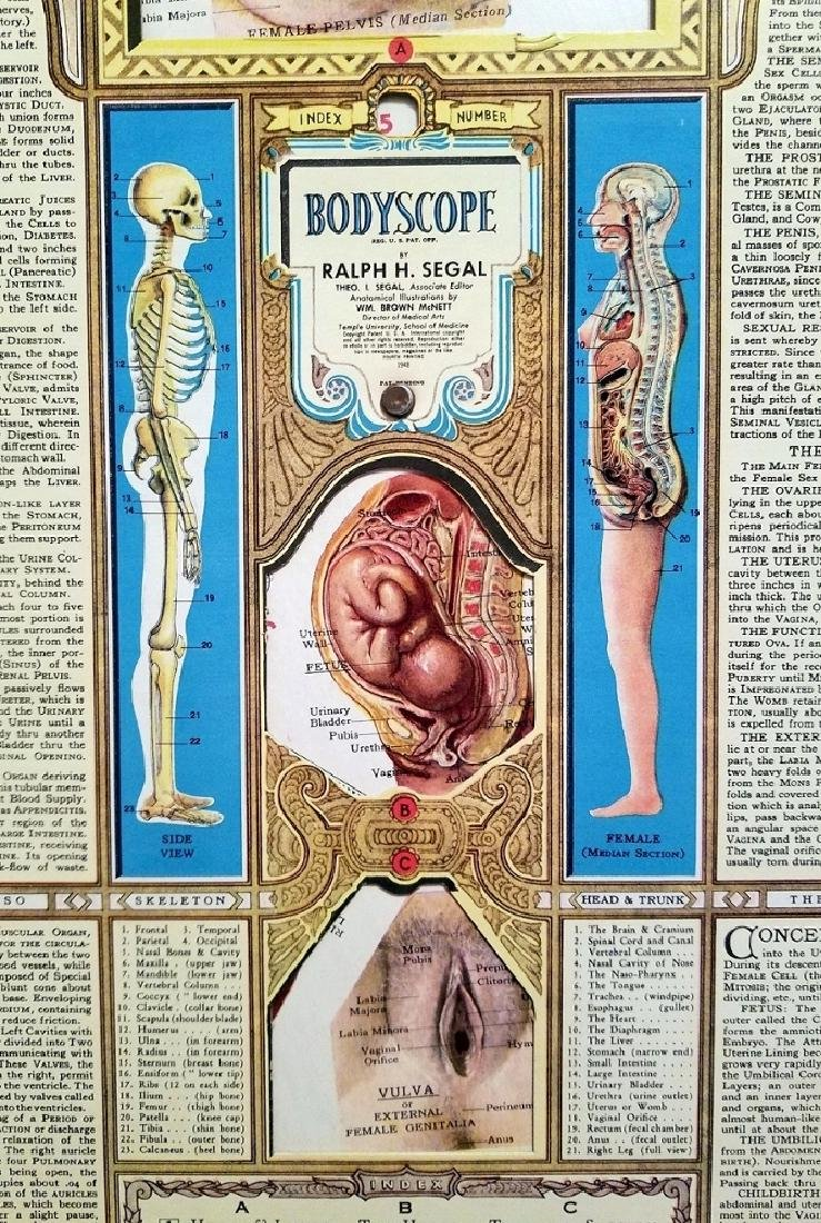 Bodyscope Anatomy Volvelle Art Deco Guide. 1948 - 2