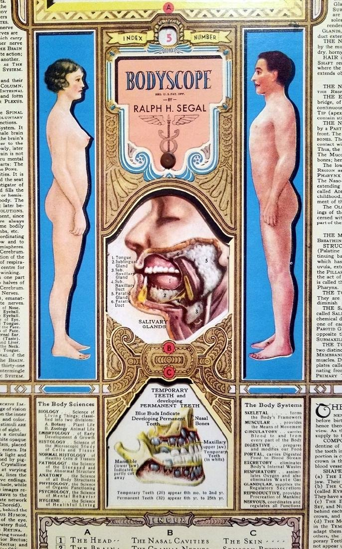 Bodyscope Anatomy Volvelle Art Deco Guide. 1948 - 8