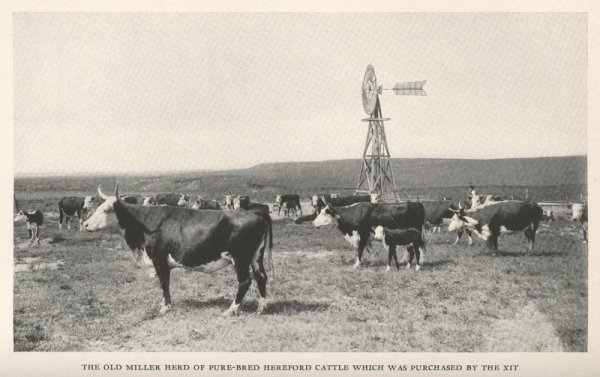 213: HALEY, J[ames] Evetts. The XIT Ranch of Texas.... - 10