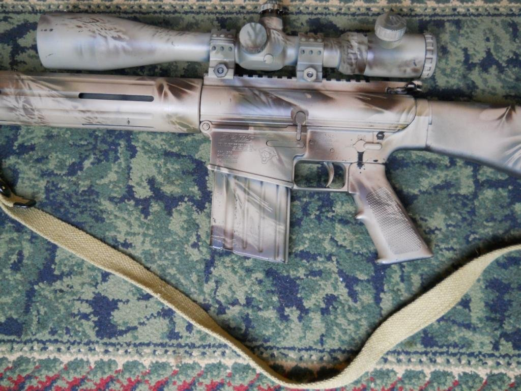 460: AR10 DPMS WINCHESTER 308W/SCOPE