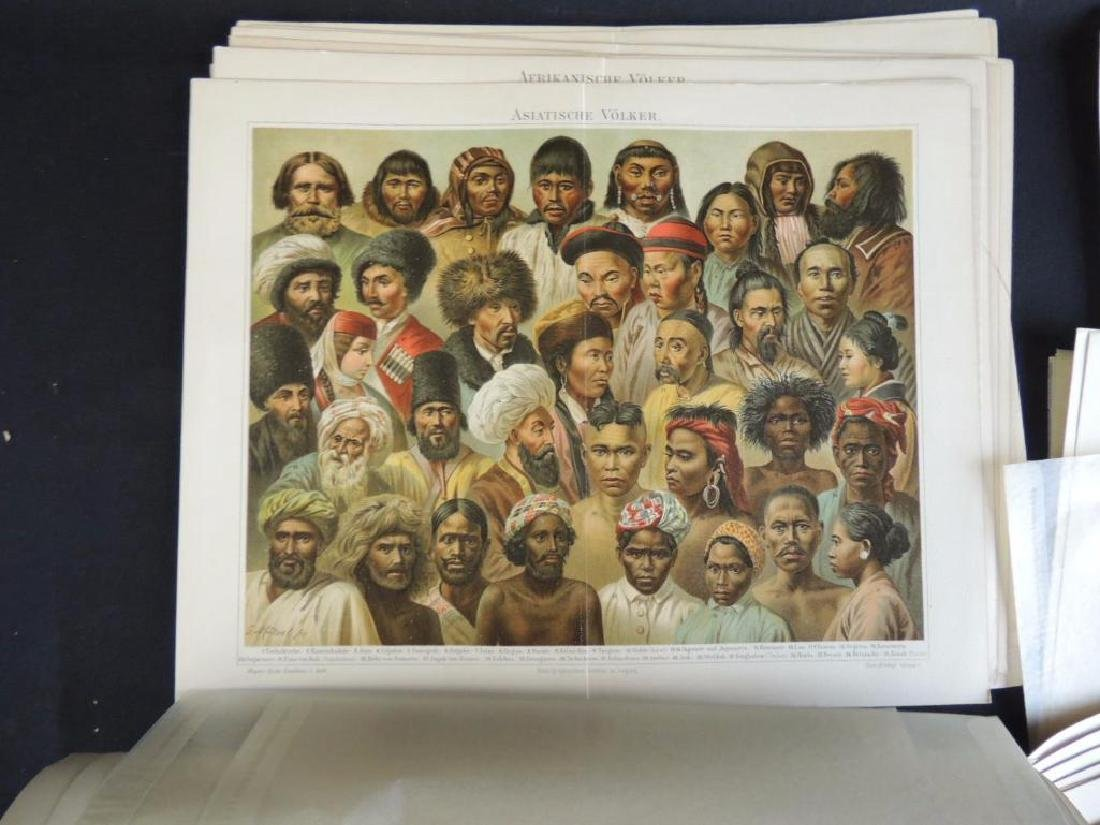 Large Group of Prints Featuring Animals, People, - 7