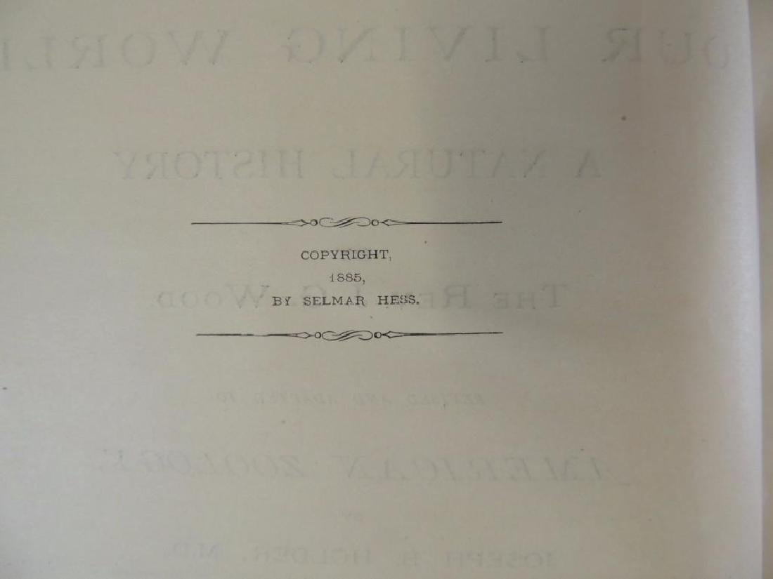 1885's Animate Creation by Rev. J.G. Wood Volumes 1 and - 5