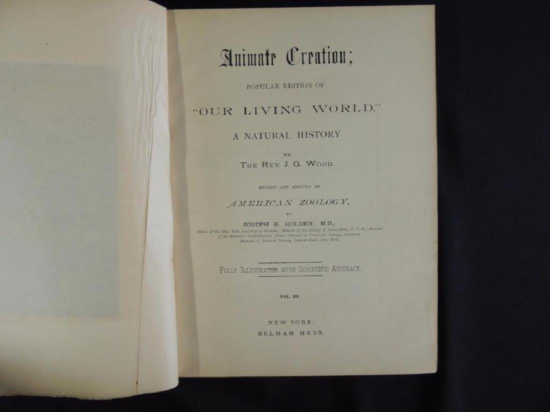 1885's Animate Creation by Rev. J.G. Wood Volumes 1 and - 7