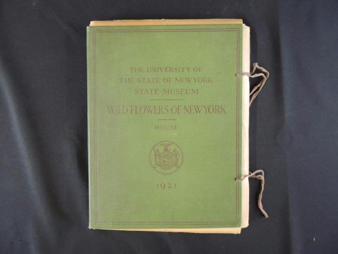 1921 Wild Flowers of New York Plate Book