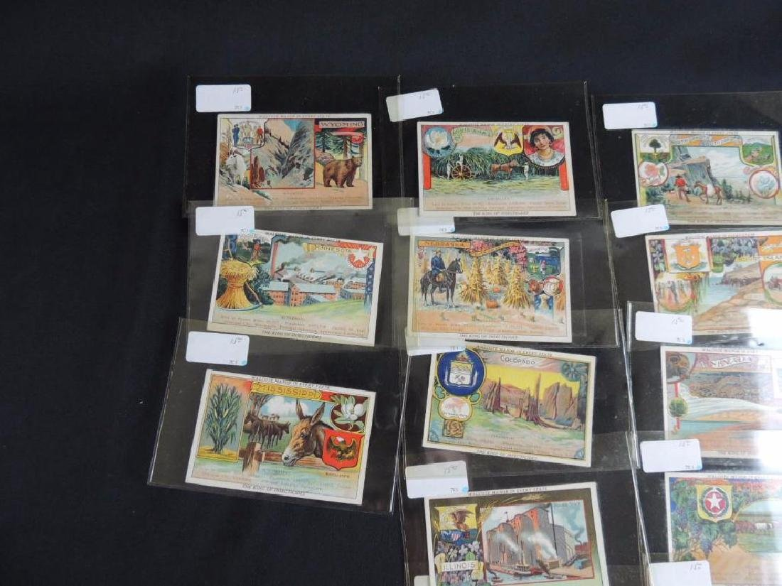 Group of 17 Victorian Trade Cards Featuring States - 4