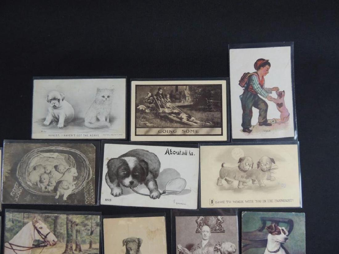 Group of 18 Postcards Featuring Dogs - 2