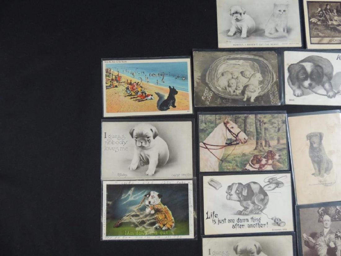 Group of 18 Postcards Featuring Dogs - 4