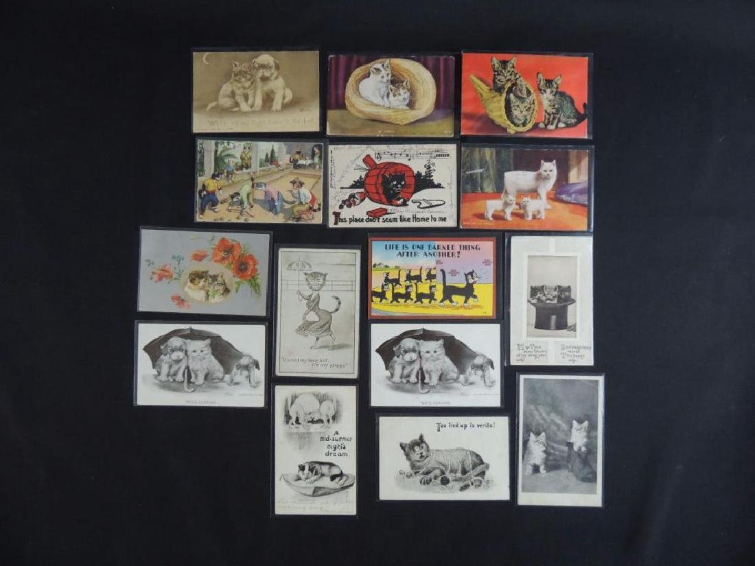 Group of 15 Cat Postcards