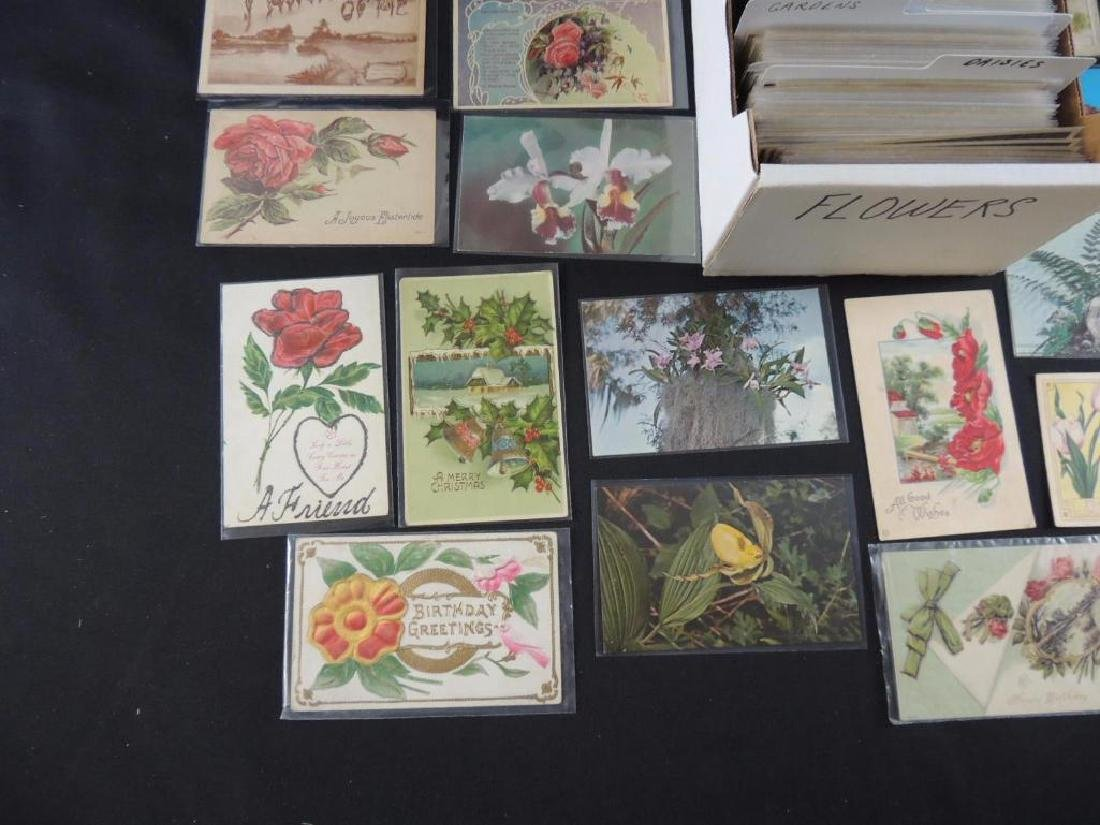 Approximately 700 Plus Flower Postcards - 2