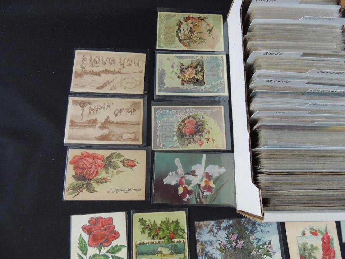 Approximately 700 Plus Flower Postcards - 3