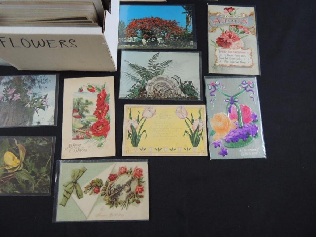 Approximately 700 Plus Flower Postcards - 6