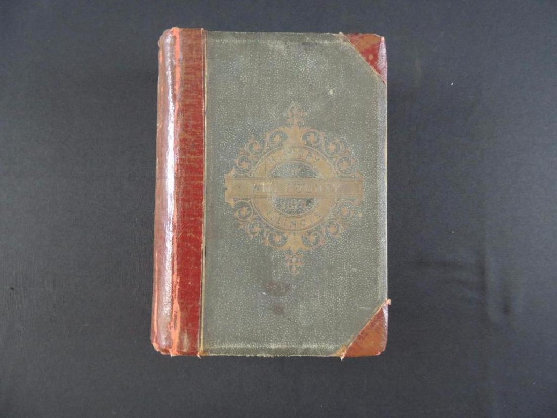 1878 History of Will County Illinois