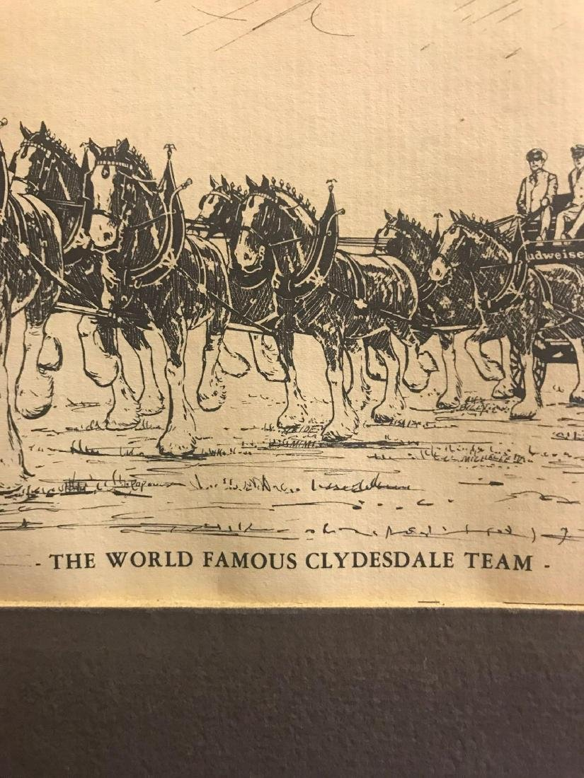 Vintage Budweiser the world famous Clydesdale team - 3