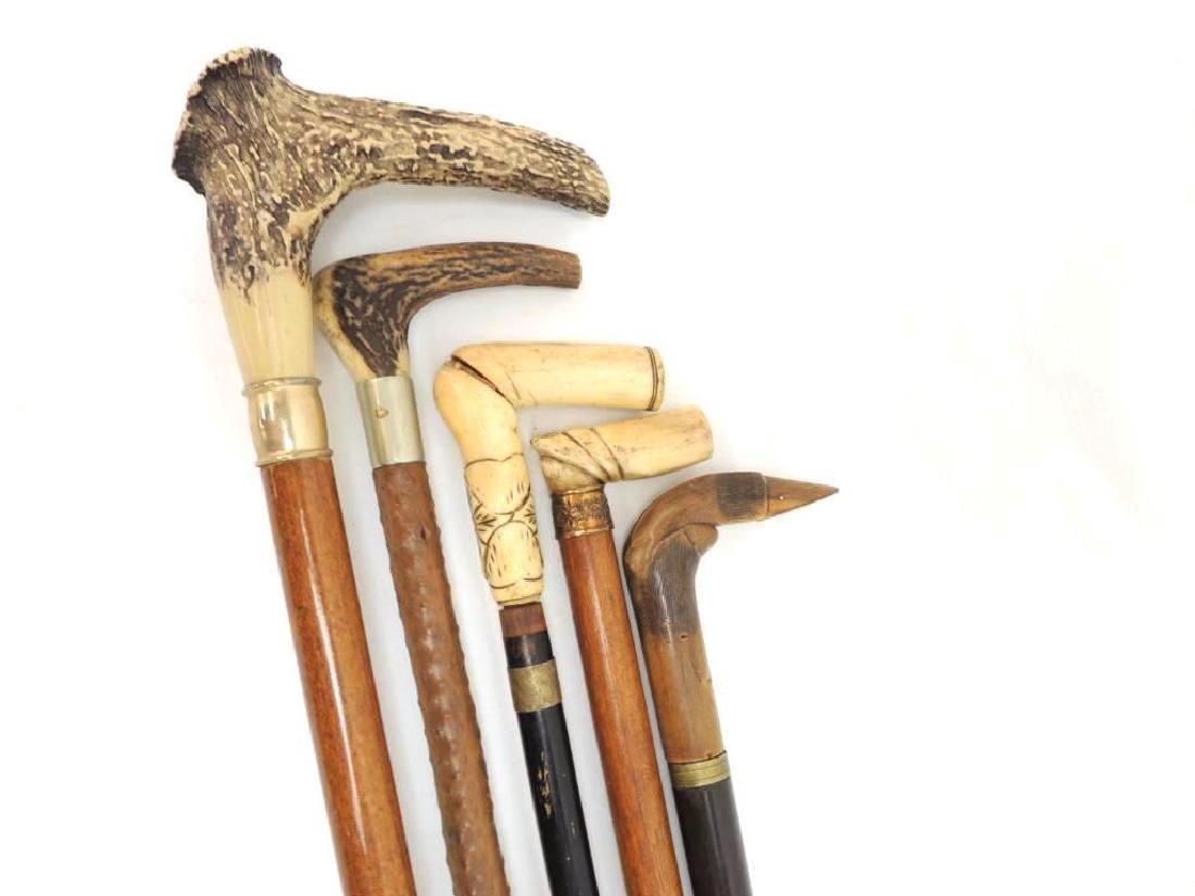 Group of 5 Ornate Antler and Carved Horn Canes - 2