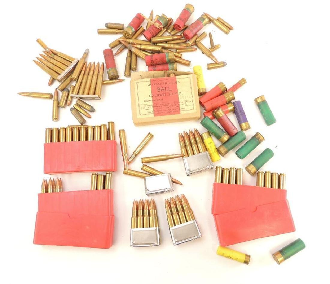 Group of Ammunition 12 GA and .30 Cal. Cartridges