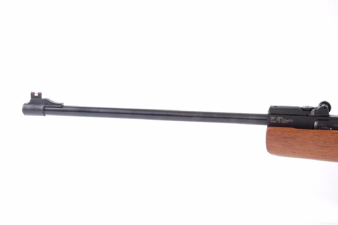 Winchester Air Rifles Model 1000 .177 Cal. Air Rifle - 10