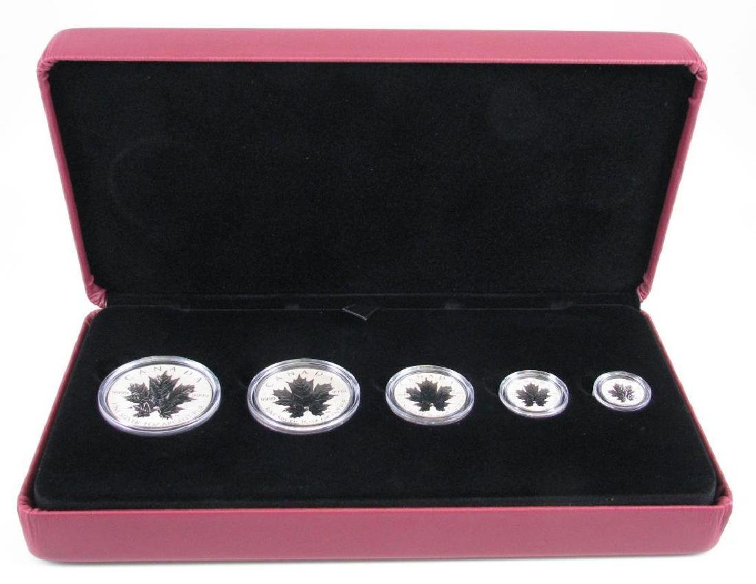 2013 Silver Maple Leaf Fractional Set