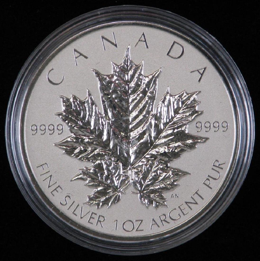 2013 Silver Maple Leaf Fractional Set - 3